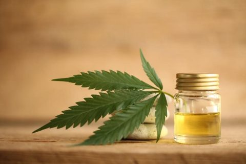 CBD For Overall Well-being – Know What It Stands For?